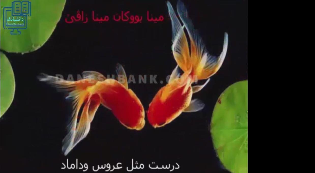 دانلود کلیپ نوروزی دیخستان