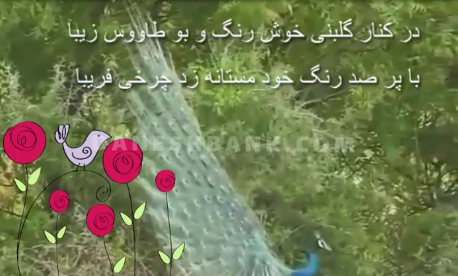 دانلود کلیپ نوروزی طاووس